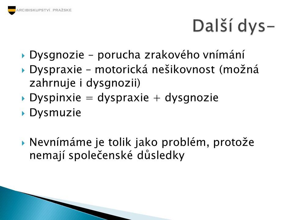 Dysgnozie – porucha zrakového vnímání  Dyspraxie – motorická nešikovnost (možná zahrnuje i dysgnozii)  Dyspinxie = dyspraxie + dysgnozie  Dysmuzi