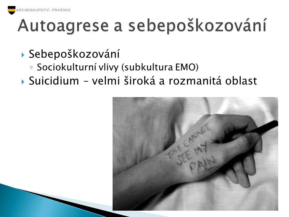  Sebepoškozování ◦ Sociokulturní vlivy (subkultura EMO)  Suicidium – velmi široká a rozmanitá oblast