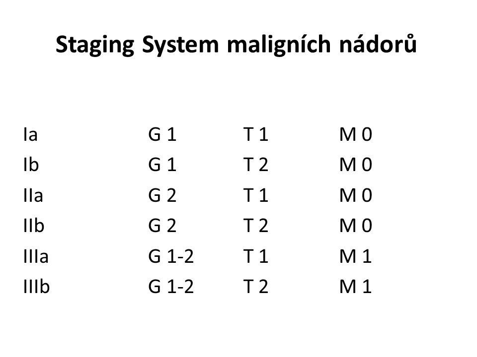 Staging System maligních nádorů Ia G 1 T 1 M 0 Ib G 1 T 2 M 0 IIa G 2 T 1 M 0 IIb G 2 T 2 M 0 IIIa G 1-2 T 1 M 1 IIIb G 1-2 T 2 M 1