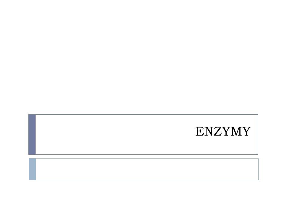 Základní charakteristiky  bílkoviny, které katalyzují všechny reakce probíhající v ŽO  jsou označovány jako biokatalyzátory  bio = přírodní  katalyzátor  látky, které urychlují průběh reakce, aniž by se sami při reakci spotřebovávaly  neboli vstupují do reakce a vystupují z ní v nezměněné podobě  v ŽO jsou tyto katalyzátory nazývány enzymy Co je to katalyzátor ?