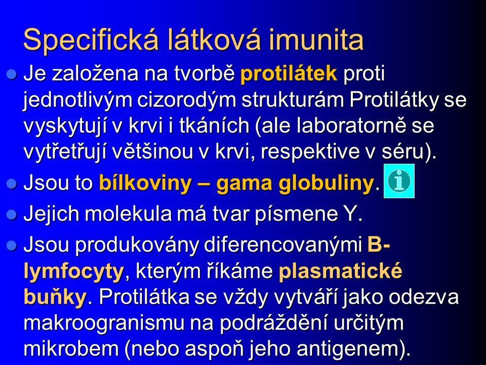 Specifická látková imunita Je založena na tvorbě protilátek proti jednotlivým cizorodým strukturám Protilátky se vyskytují v krvi i tkáních (ale labor
