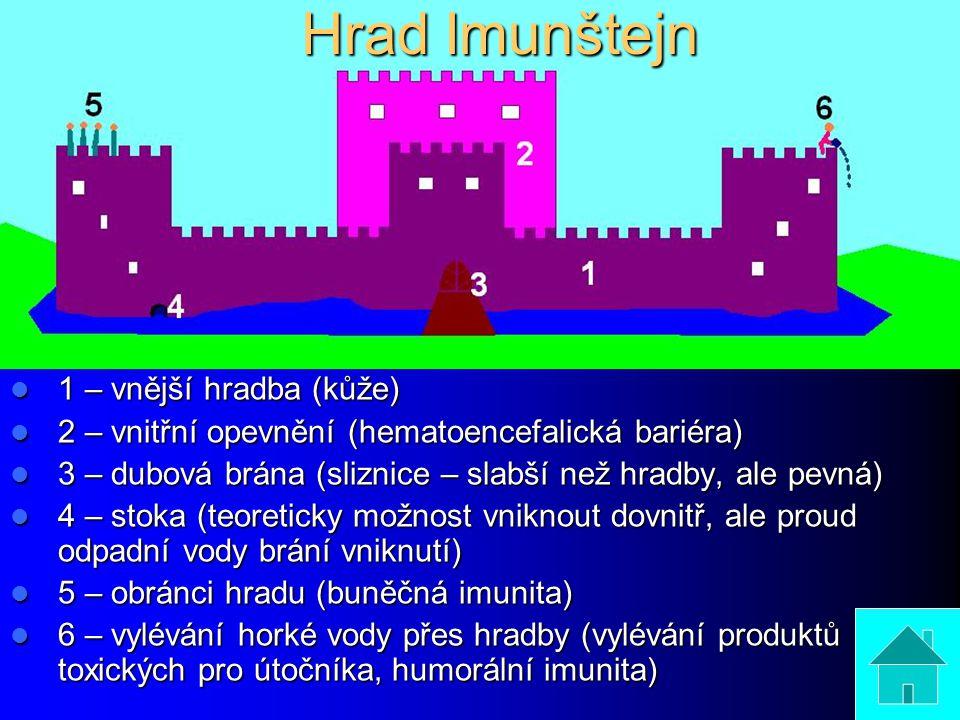 1 – vnější hradba (kůže) 1 – vnější hradba (kůže) 2 – vnitřní opevnění (hematoencefalická bariéra) 2 – vnitřní opevnění (hematoencefalická bariéra) 3 – dubová brána (sliznice – slabší než hradby, ale pevná) 3 – dubová brána (sliznice – slabší než hradby, ale pevná) 4 – stoka (teoreticky možnost vniknout dovnitř, ale proud odpadní vody brání vniknutí) 4 – stoka (teoreticky možnost vniknout dovnitř, ale proud odpadní vody brání vniknutí) 5 – obránci hradu (buněčná imunita) 5 – obránci hradu (buněčná imunita) 6 – vylévání horké vody přes hradby (vylévání produktů toxických pro útočníka, humorální imunita) 6 – vylévání horké vody přes hradby (vylévání produktů toxických pro útočníka, humorální imunita) Hrad Imunštejn