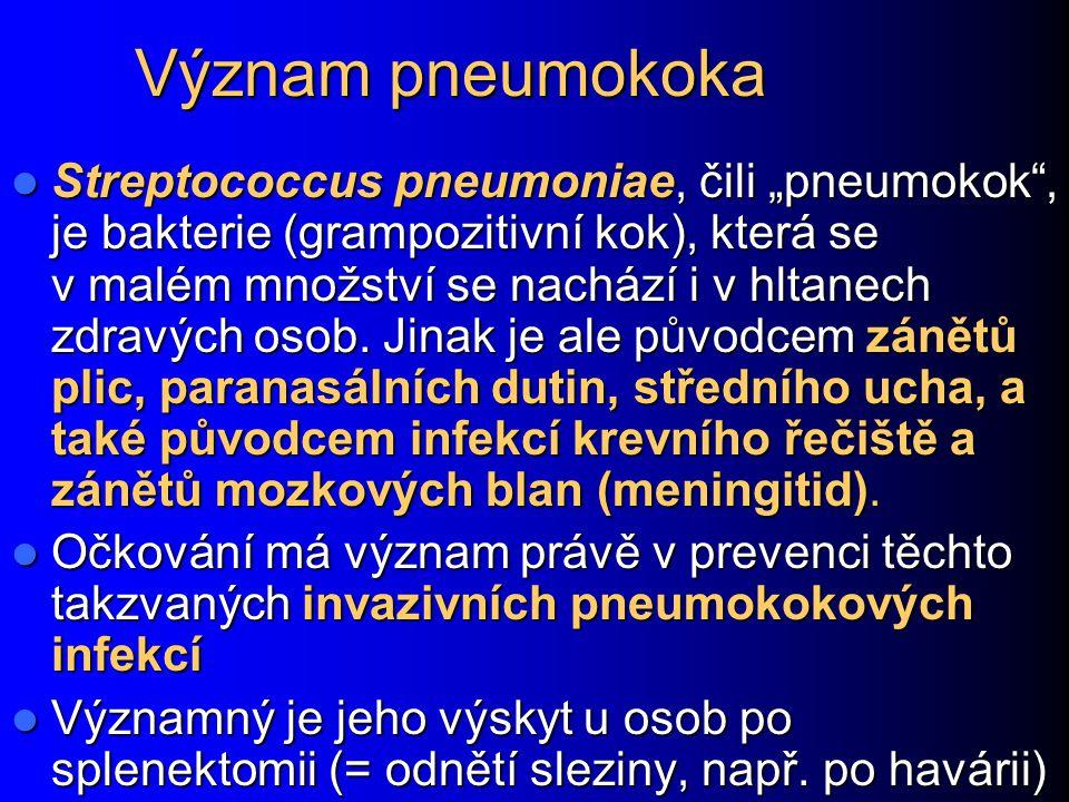"""Význam pneumokoka Streptococcus pneumoniae, čili """"pneumokok , je bakterie (grampozitivní kok), která se v malém množství se nachází i v hltanech zdravých osob."""