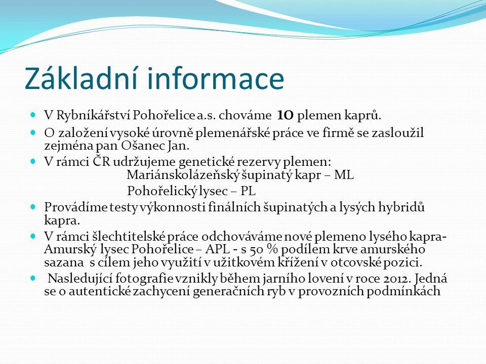Základní informace V Rybníkářství Pohořelice a.s. chováme 10 plemen kaprů. O založení vysoké úrovně plemenářské práce ve firmě se zasloužil zejména pa