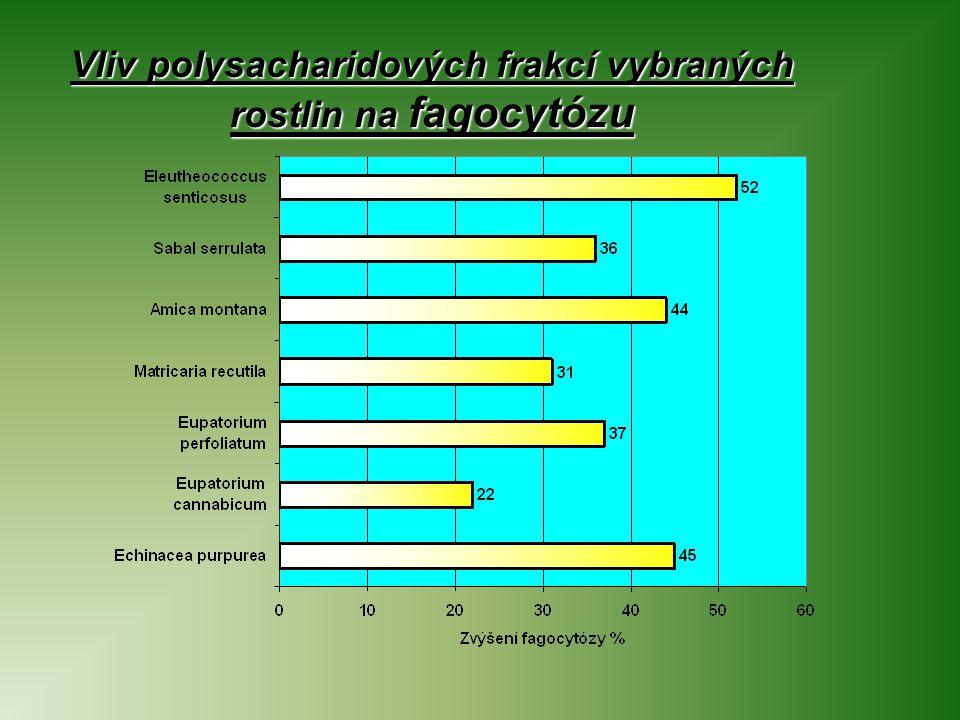 Vliv polysacharidových frakcí vybraných rostlin na fagocytózu