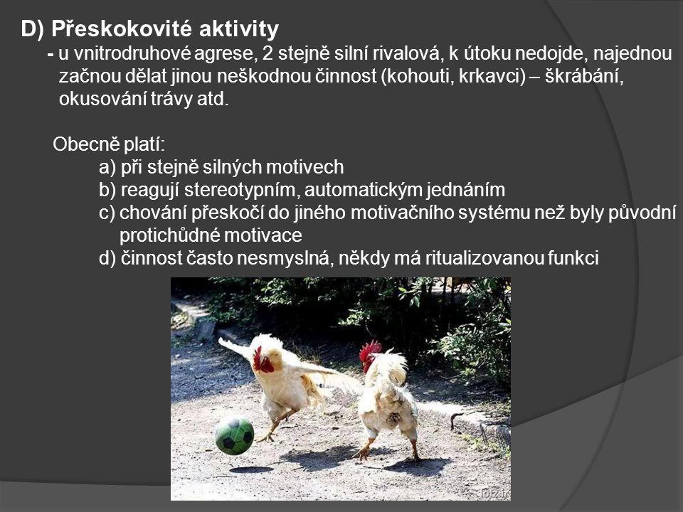 D) Přeskokovité aktivity - u vnitrodruhové agrese, 2 stejně silní rivalová, k útoku nedojde, najednou začnou dělat jinou neškodnou činnost (kohouti, k