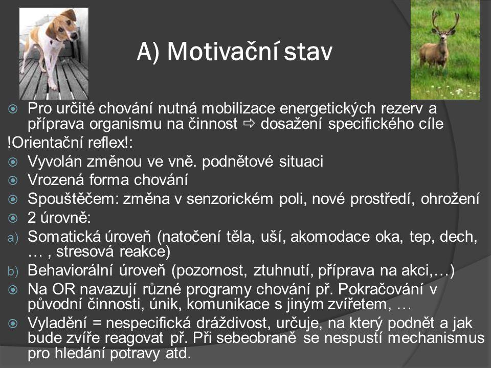 A) Motivační stav  Pro určité chování nutná mobilizace energetických rezerv a příprava organismu na činnost  dosažení specifického cíle !Orientační reflex!:  Vyvolán změnou ve vně.