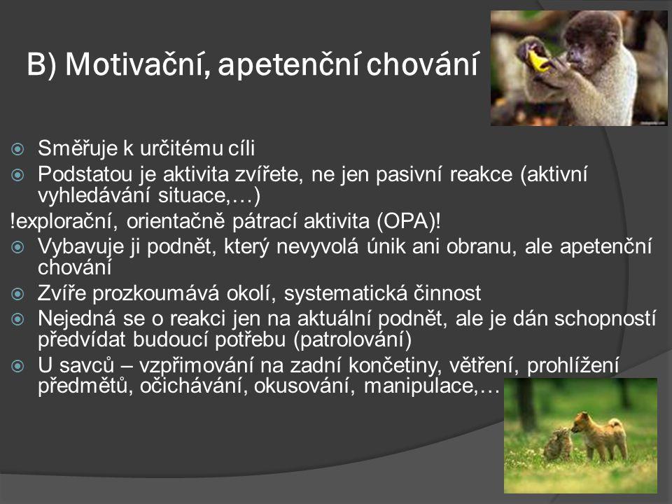 B) Motivační, apetenční chování  Směřuje k určitému cíli  Podstatou je aktivita zvířete, ne jen pasivní reakce (aktivní vyhledávání situace,…) !explorační, orientačně pátrací aktivita (OPA).