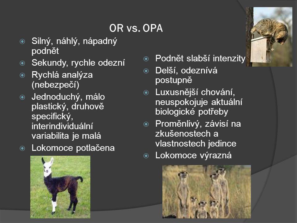 OR vs. OPA  Silný, náhlý, nápadný podnět  Sekundy, rychle odezní  Rychlá analýza (nebezpečí)  Jednoduchý, málo plastický, druhově specifický, inte