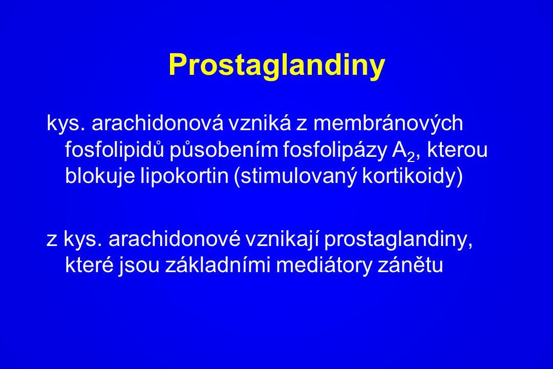 Prostaglandiny kys. arachidonová vzniká z membránových fosfolipidů působením fosfolipázy A 2, kterou blokuje lipokortin (stimulovaný kortikoidy) z kys