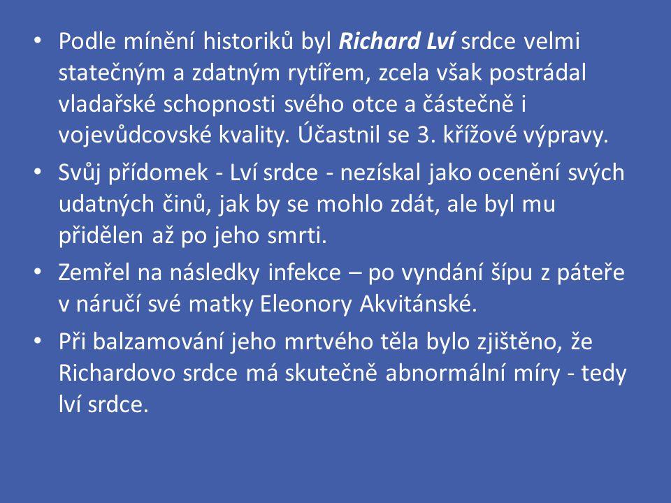 Podle mínění historiků byl Richard Lví srdce velmi statečným a zdatným rytířem, zcela však postrádal vladařské schopnosti svého otce a částečně i voje