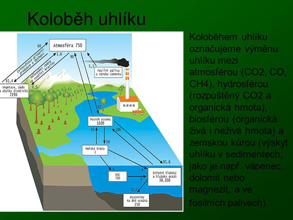 Koloběh uhlíku Koloběhem uhlíku označujeme výměnu uhlíku mezi atmosférou (CO2, CO, CH4), hydrosférou (rozpuštěný CO2 a organická hmota), biosférou (or