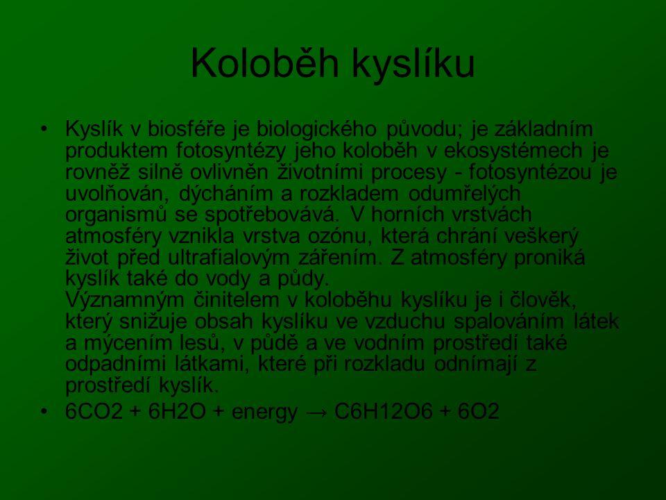 Koloběh kyslíku Kyslík v biosféře je biologického původu; je základním produktem fotosyntézy jeho koloběh v ekosystémech je rovněž silně ovlivněn živo