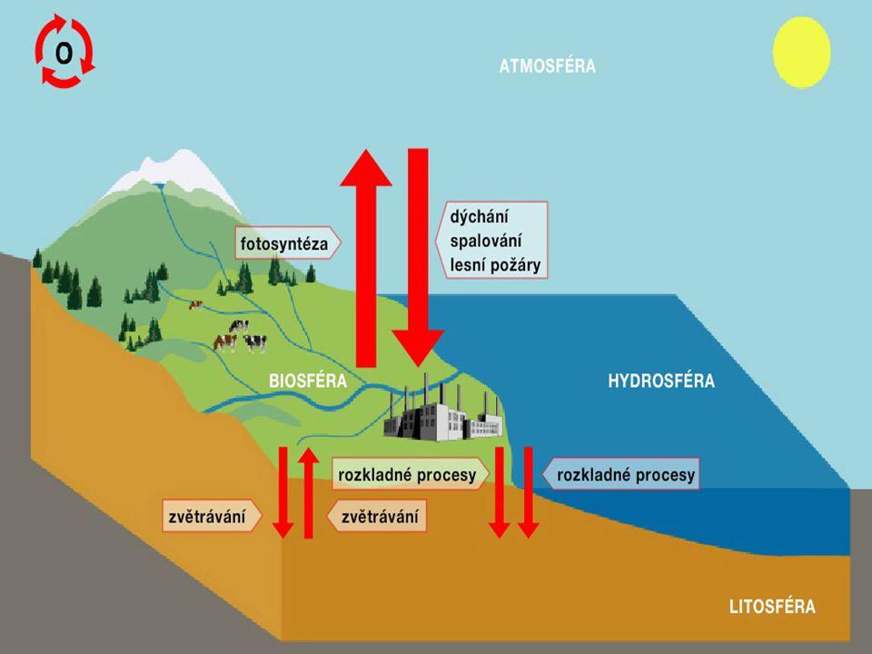 Koloběh Dusíku Koloběh dusíku je velmi složitý.