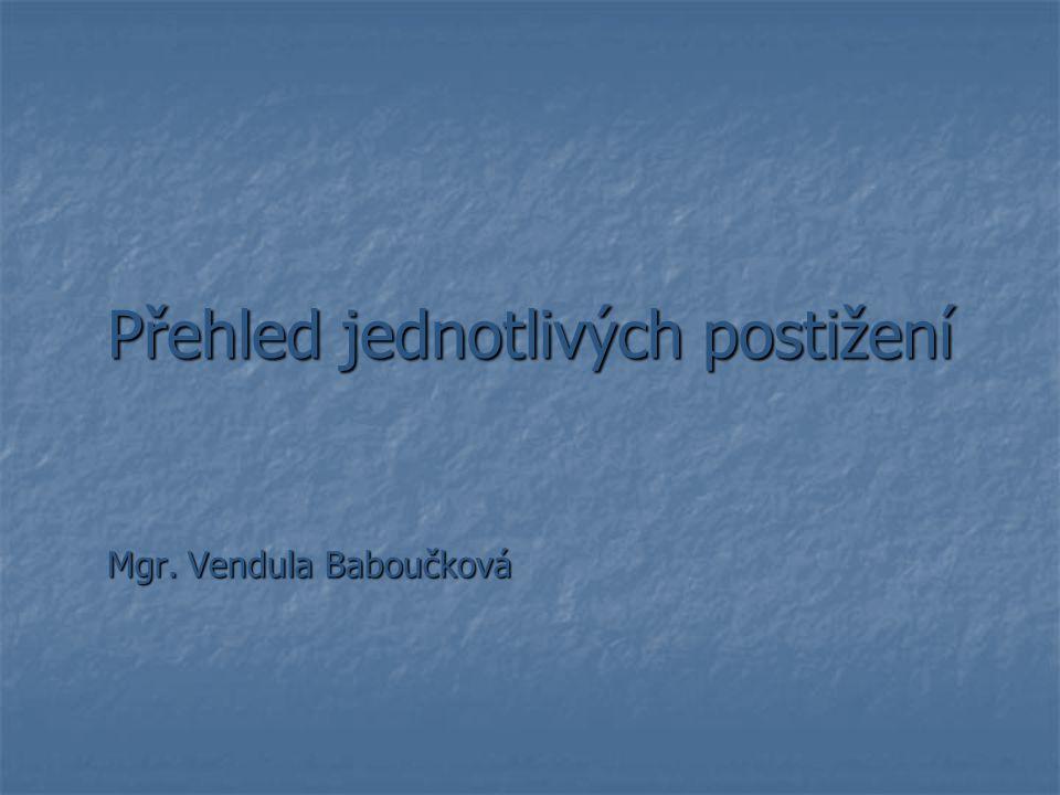 Přehled jednotlivých postižení Mgr. Vendula Baboučková