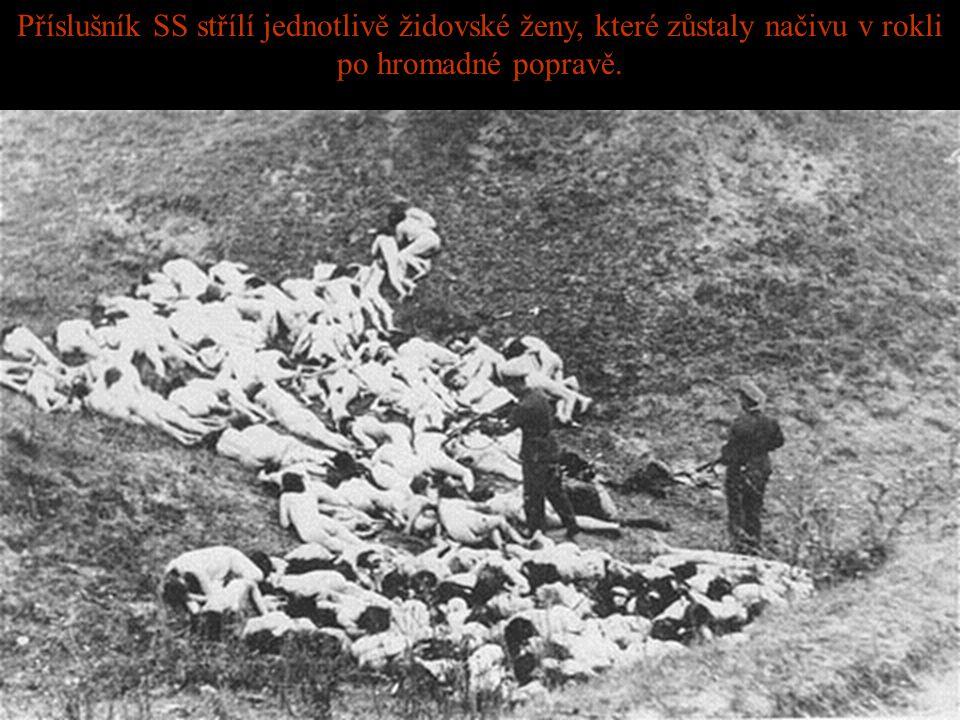 Židovské ženy, některé z nich držící děti, jsou donuceny čekat v řadě před popravou Německými SS.