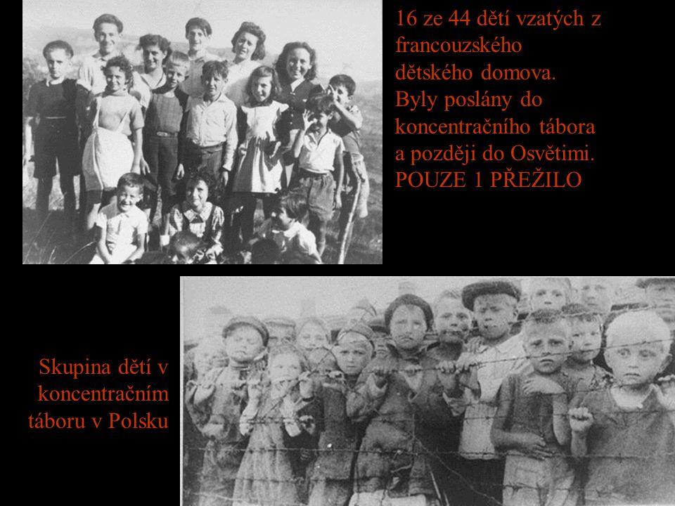 Část zásob cyklonu-B - jedovatého plynu ve vyhlazovacím táboru Majdanek. Předtím, než se začal používat zmíněný plyn, byli Židé zabíjeni v mobilních p