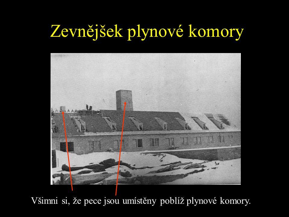 Plynové komory Nacisté vehnali velké skupiny vězňů do malých betonových místností a otvory ve stropu vysypali smrtící látku v krystalické podobě. Tyto