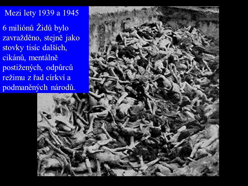 """Bylo Konečné řešení """"úspěšné""""? Nacisté si na konferenci ve Wansee kladli za cíl zabít 11 miliónů Židů. Dnes žije v Polsku jen 2000 Židů. Nacisté dokáz"""