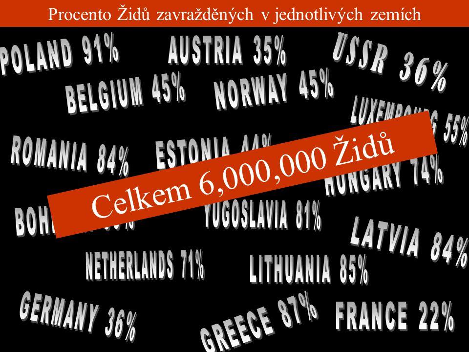 Mezi lety 1939 a 1945 6 miliónů Židů bylo zavražděno, stejně jako stovky tisíc dalších, cikánů, mentálně postižených, odpůrců režimu z řad církví a po