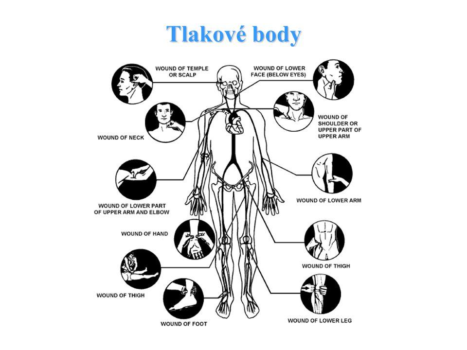 Polohování končetiny a tlakové body Využití gravitace – krev z míst výše situovaných než srdce má tendenci téci dolů vlivem gravitace – hlavně žilní k