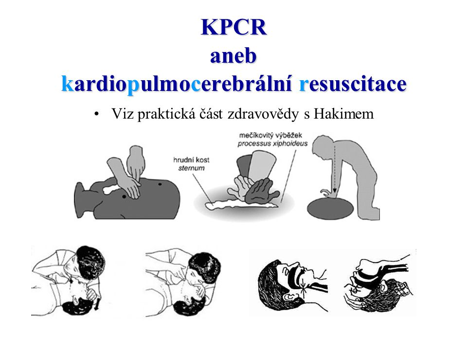 Základní vitální funkce Srdeční činnost (tep na krčních tepnách = karotidách, na vřetenní tepně, na pažní tepně) – fyziologicky 60-80 tepů/min Dýchání