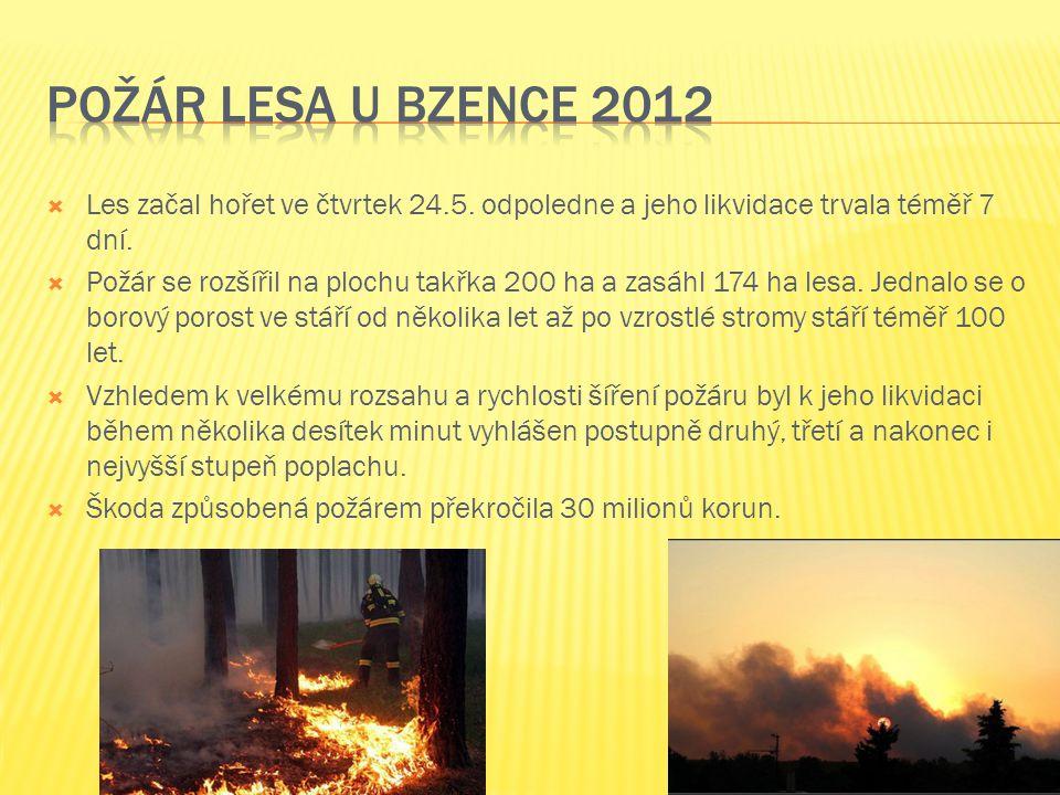 Les začal hořet ve čtvrtek 24.5. odpoledne a jeho likvidace trvala téměř 7 dní.  Požár se rozšířil na plochu takřka 200 ha a zasáhl 174 ha lesa. Je