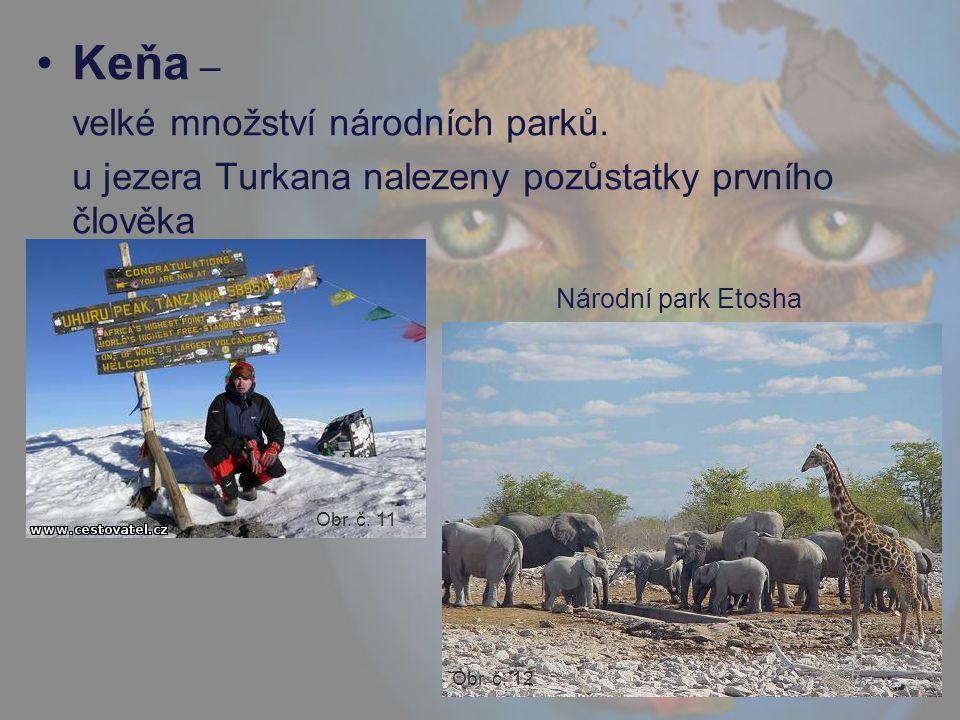 Keňa – velké množství národních parků. u jezera Turkana nalezeny pozůstatky prvního člověka Národní park Etosha Obr. č. 11 Obr. č. 12