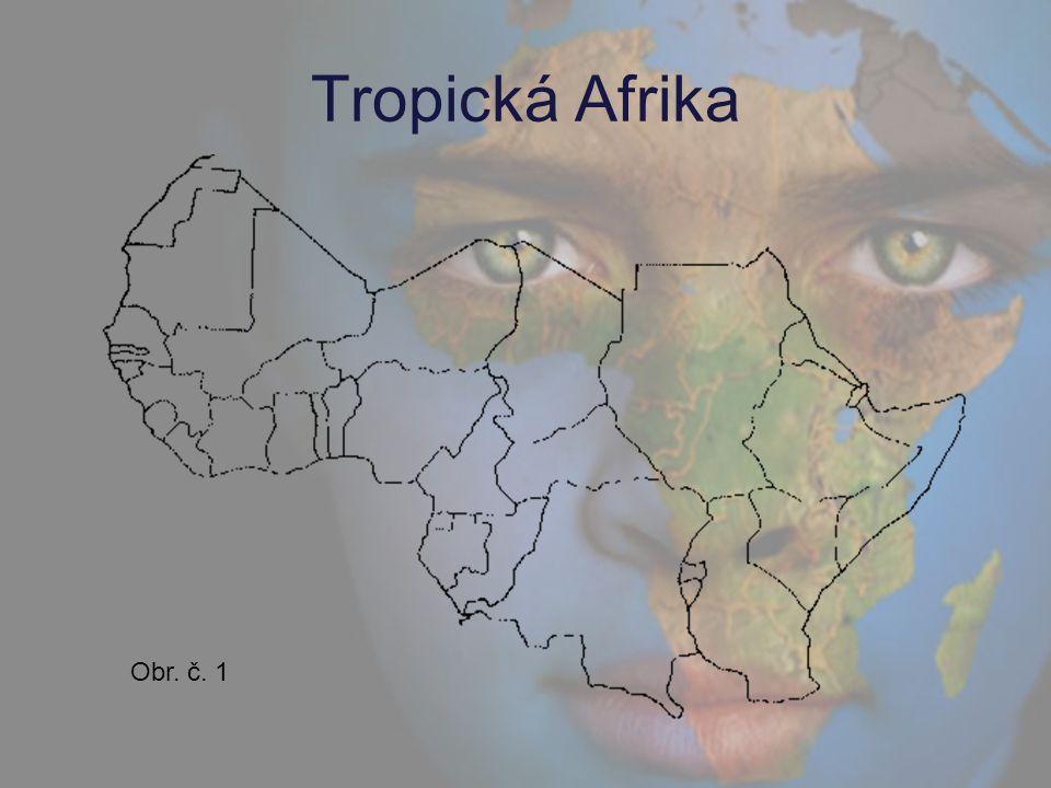 Přírodní poměry Území jižně od Sahary (včetně) mezi dvěma obratníky.