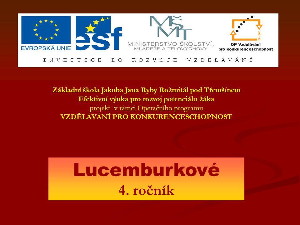 """Zikmund Lucemburský Bratr Václava IV, znám pod přezdívkou """" šelma ryšavá ."""