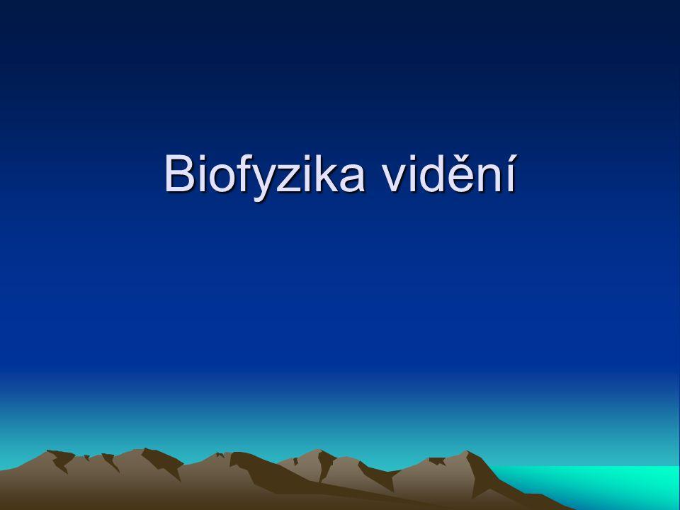 Biofyzika vidění