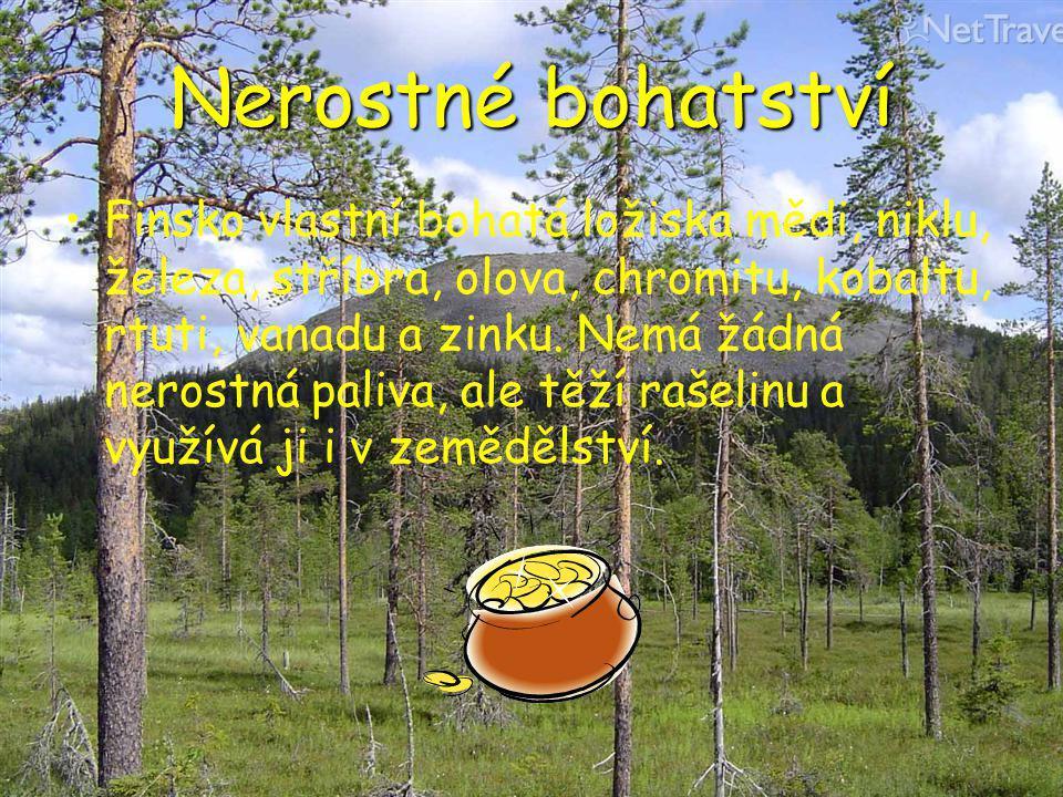 Nerostné bohatství Finsko vlastní bohatá ložiska mědi, niklu, železa, stříbra, olova, chromitu, kobaltu, rtuti, vanadu a zinku. Nemá žádná nerostná pa