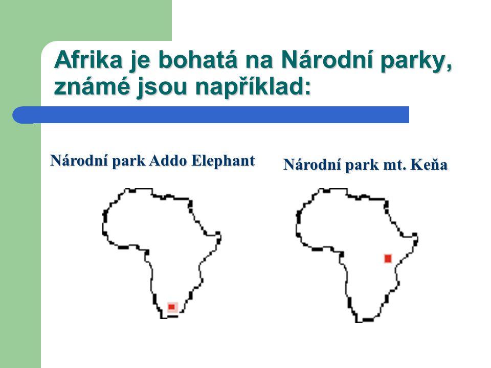 Národní parky Afriky Národní park Kilimandžáro Národní park W Národní park W