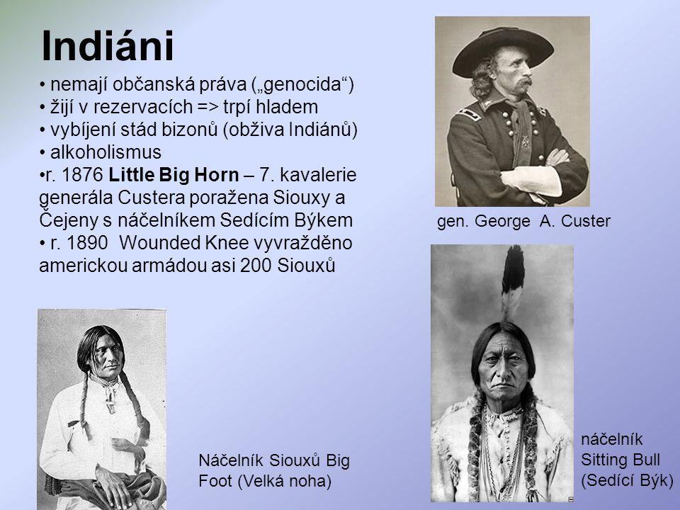 """nemají občanská práva (""""genocida"""") žijí v rezervacích => trpí hladem vybíjení stád bizonů (obživa Indiánů) alkoholismus r. 1876 Little Big Horn – 7. k"""