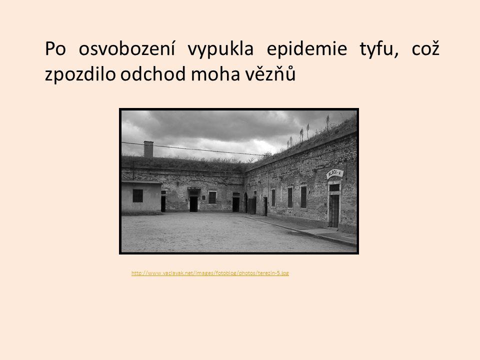 Po osvobození vypukla epidemie tyfu, což zpozdilo odchod moha vězňů http://www.vaclavak.net/images/fotoblog/photos/terezin-5.jpg