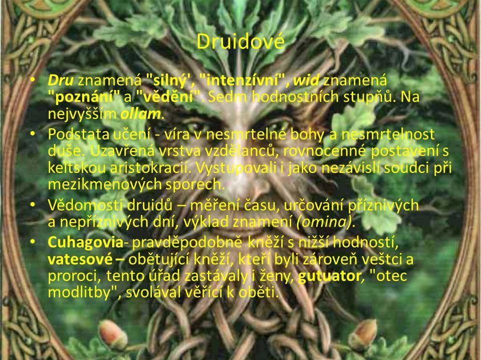 Druidové Dru znamená