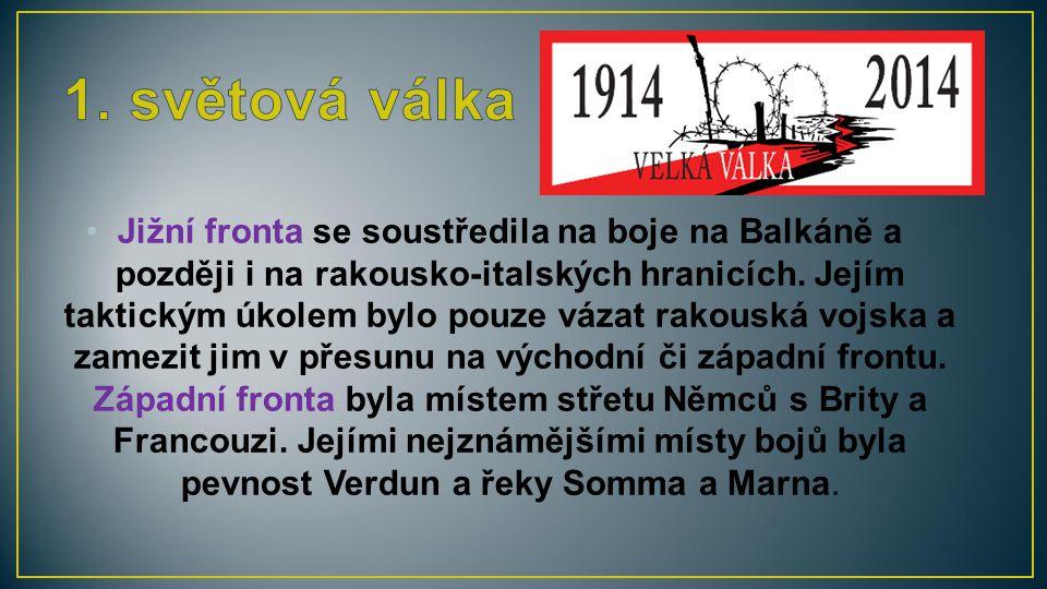 Jižní fronta se soustředila na boje na Balkáně a později i na rakousko-italských hranicích. Jejím taktickým úkolem bylo pouze vázat rakouská vojska a