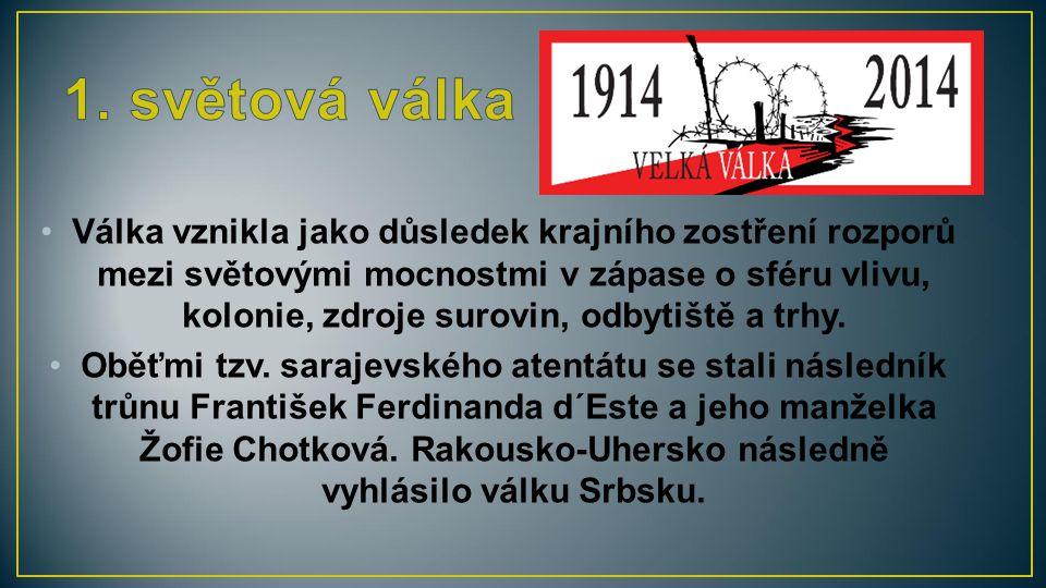 Za atentátem na následníka trůnu stál Gavrilo Princip, člen srbské nacionalistické organizace Černá ruka.
