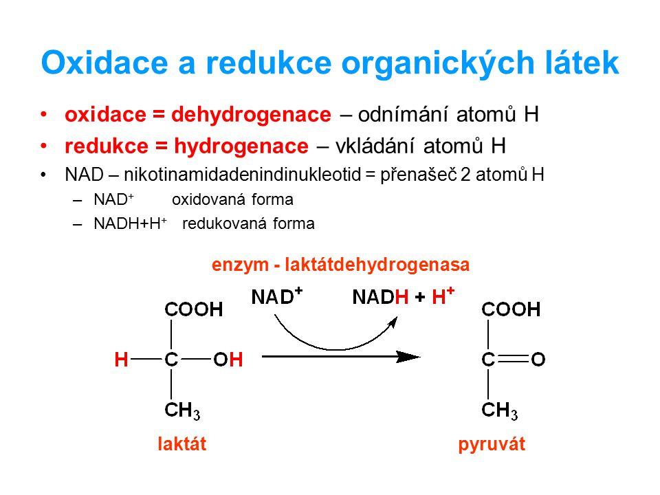 Oxidace a redukce organických látek oxidace = dehydrogenace – odnímání atomů H redukce = hydrogenace – vkládání atomů H NAD – nikotinamidadenindinukle