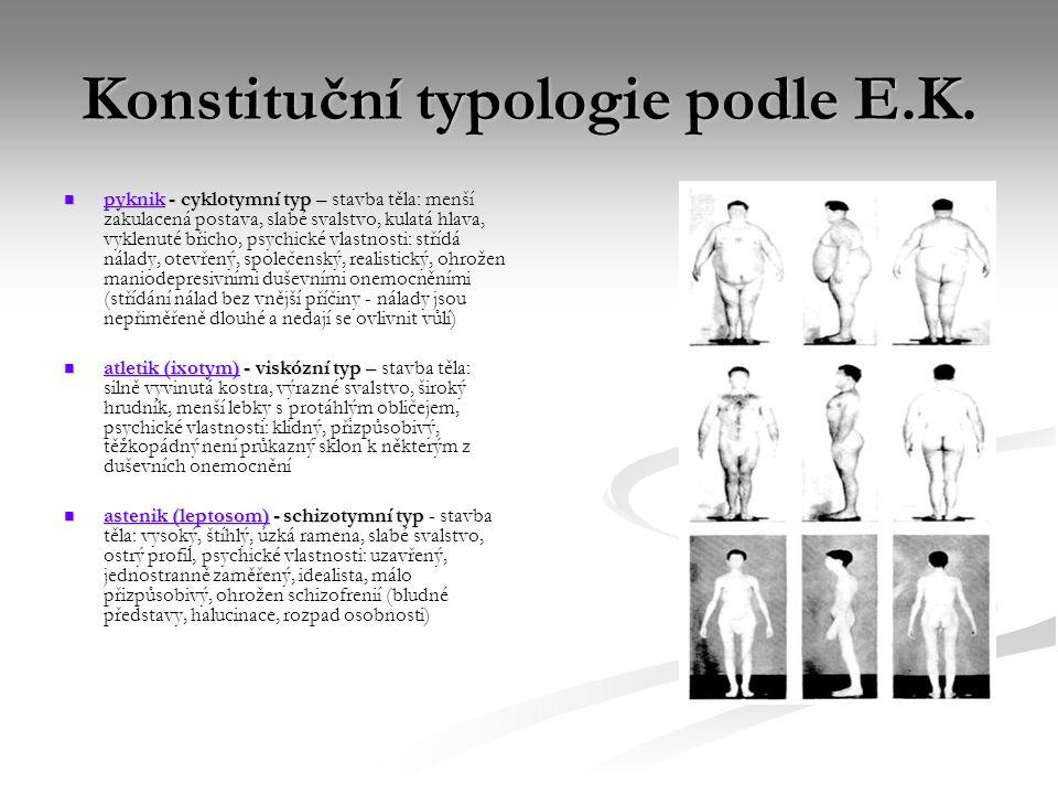 Konstituční typologie podle E.K. pyknik - cyklotymní typ – pyknik - cyklotymní typ – stavba těla: menší zakulacená postava, slabé svalstvo, kulatá hla