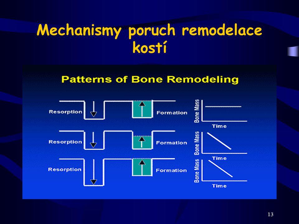 13 Mechanismy poruch remodelace kostí