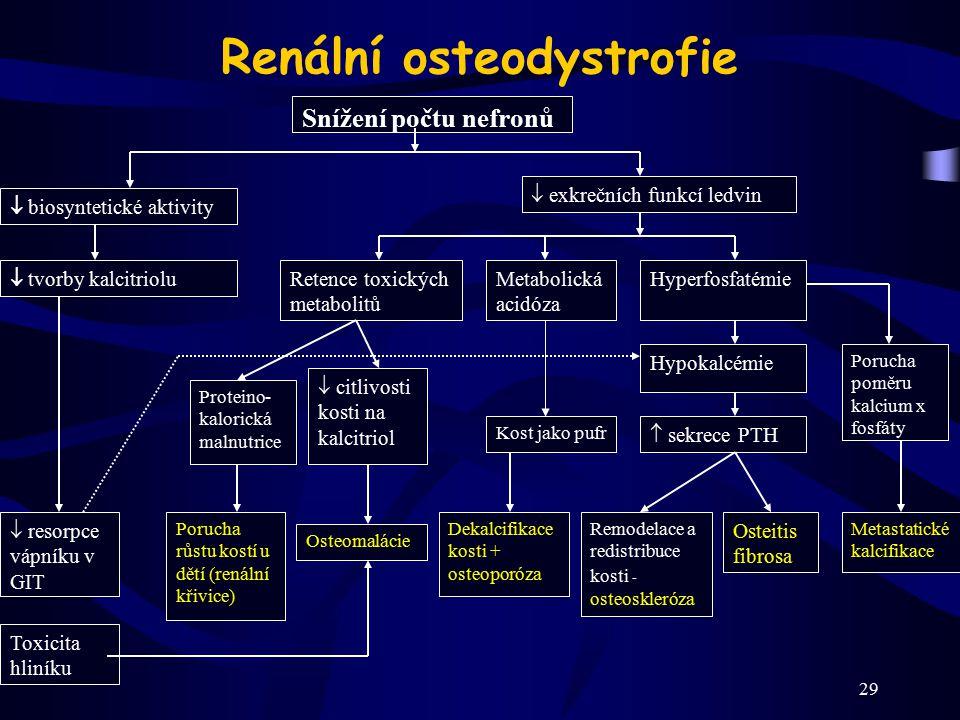 29 Renální osteodystrofie Toxicita hliníku Snížení počtu nefronů  biosyntetické aktivity  tvorby kalcitriolu  resorpce vápníku v GIT  exkrečních f