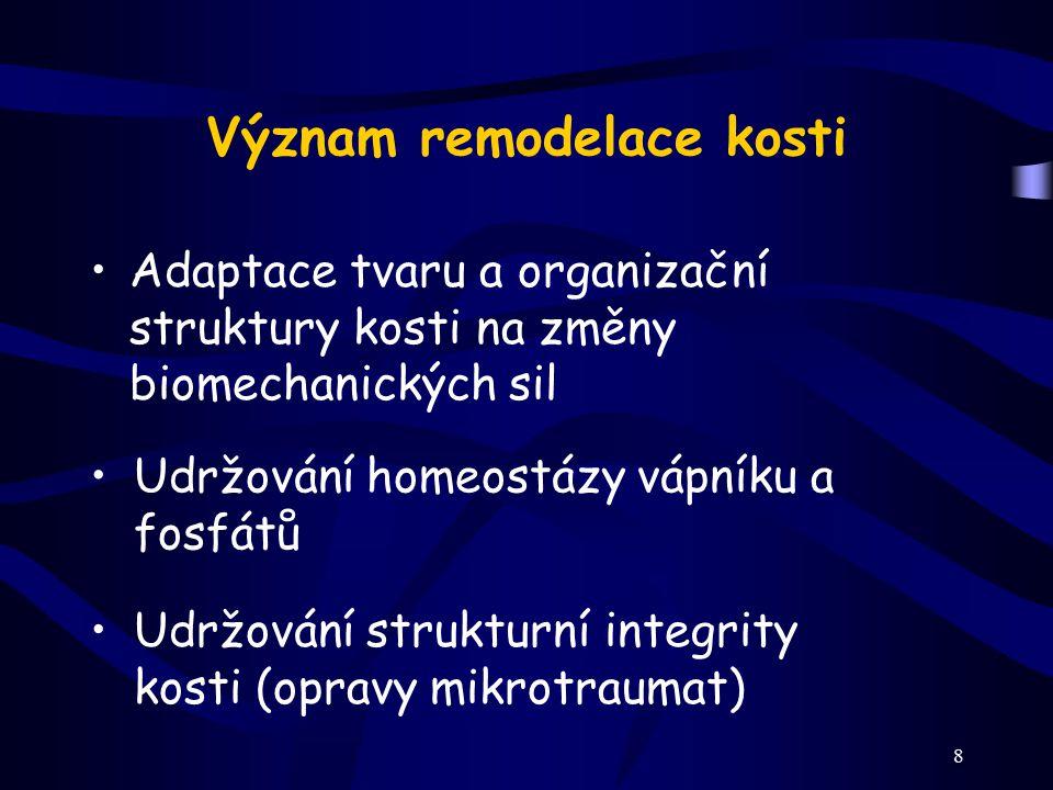 8 Význam remodelace kosti Adaptace tvaru a organizační struktury kosti na změny biomechanických sil Udržování homeostázy vápníku a fosfátů Udržování s