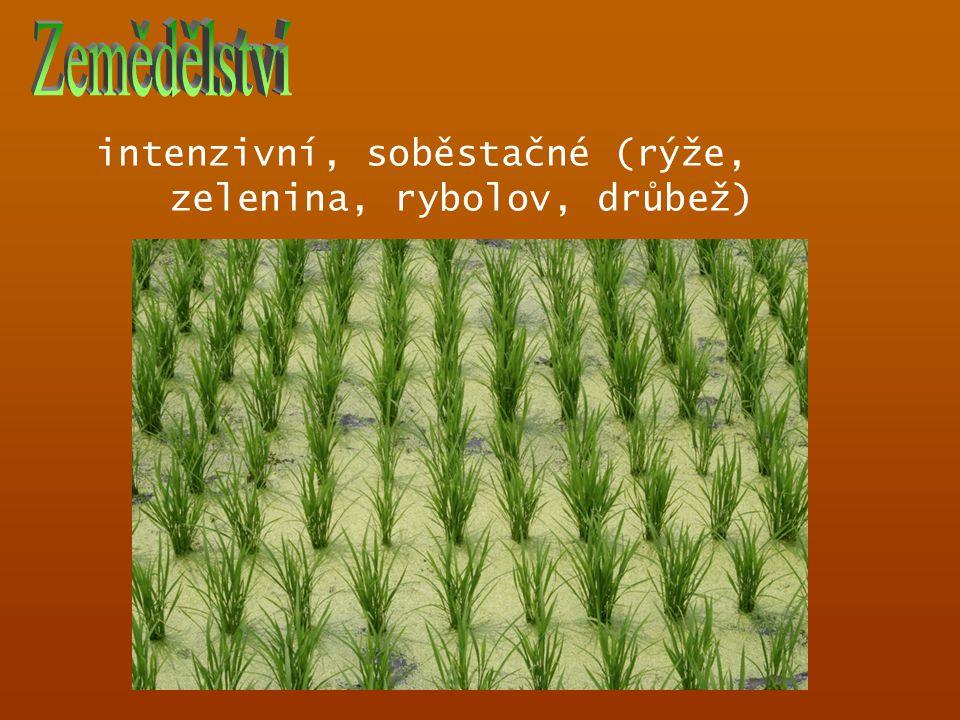 intenzivní, soběstačné (rýže, zelenina, rybolov, drůbež)