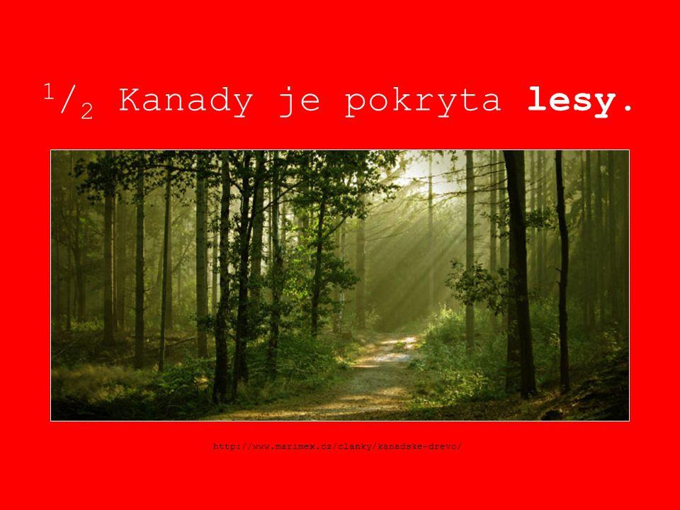 1 / 2 Kanady je pokryta lesy. http://www.marimex.cz/clanky/kanadske-drevo/
