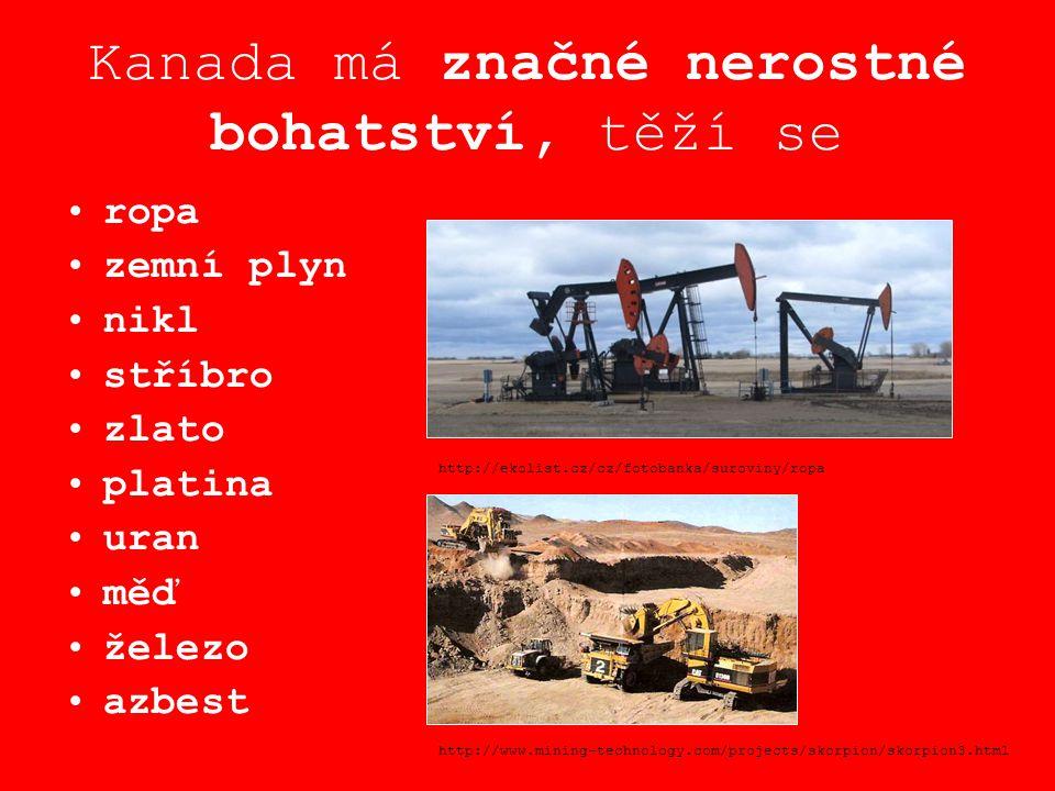 Kanada má značné nerostné bohatství, těží se ropa zemní plyn nikl stříbro zlato platina uran měď železo azbest http://ekolist.cz/cz/fotobanka/suroviny