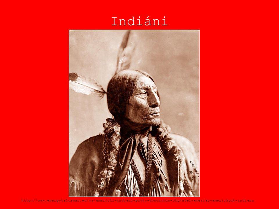 Indiáni http://www.energytalisman.eu/cz/americti-indiani-pocty-domorodcu-obyvatel-ameriky-americkych-indianu