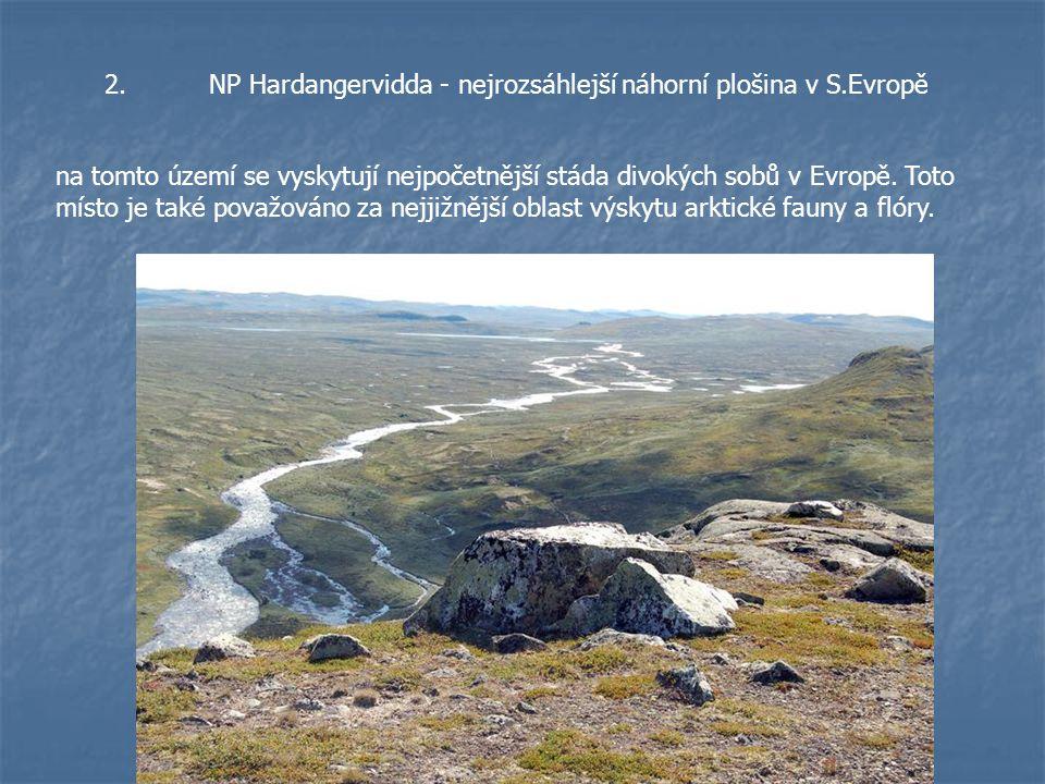 2.NP Hardangervidda - nejrozsáhlejší náhorní plošina v S.Evropě na tomto území se vyskytují nejpočetnější stáda divokých sobů v Evropě. Toto místo je