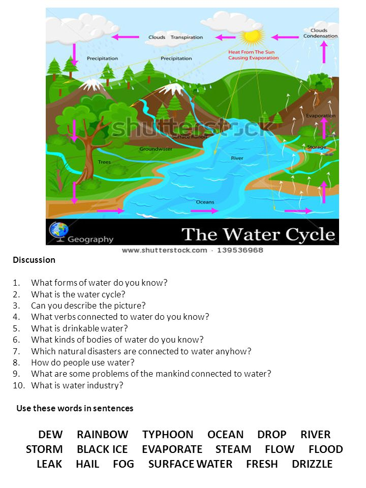 http://www.shutterstock.com/pic- 139536968/stock-vector-easy-to-edit- vector-illustration-of-water- cycle.html?src=K9KdI5p4a3gRbgJKV QRbwg-1-12 Discussion 1.What forms of water do you know.