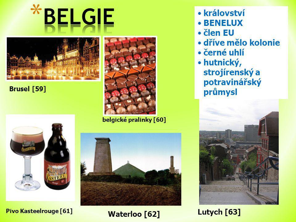 Brusel [59] království BENELUX člen EU dříve mělo kolonie černé uhlí hutnický, strojírenský a potravinářský průmysl Pivo Kasteelrouge [61] belgické pralinky [60] Waterloo [62] Lutych [63]